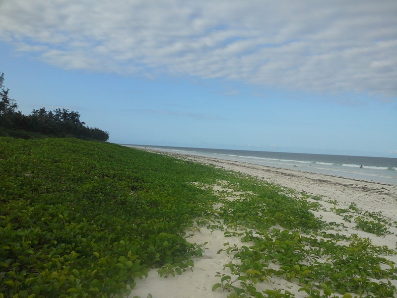 BOFA BEACH, KILIFI COUNTY